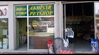 akhisar pet shop