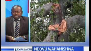 Mahakama yatupa kesi iliyokuwa ikipinga ushindi wa gavana Ali Hassan Joho: Jukwaa la KTN
