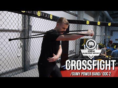 Ćwiczenia na wzmocnienie mięśni pleców i brzucha wideo
