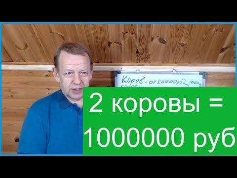 , title : 'Бизнес в деревне 2 коровы. Семья может получить 1000000 рублей в год.