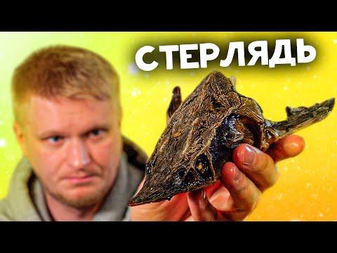 РЮМОЧНАЯ №1 спустя два года! 200 грамм рыбы за 2200 рублей. Славный Обзор. видео