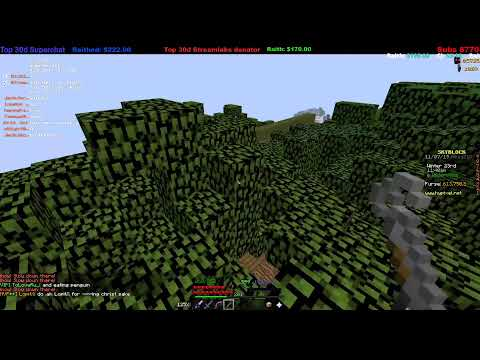 Hypixel Skyblock : Last Livestream before moving