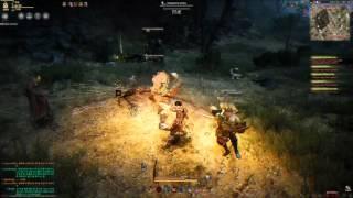 black desert warrior skill guide