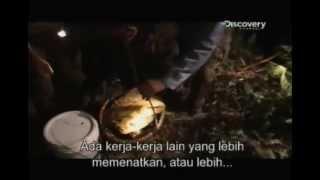Eye On Malaysia - Honey Hunters