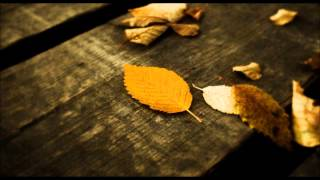 Broken Road-12 Stones-Pod Yang cover