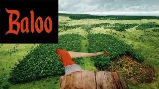 Вырубка леса в Украине и в России.