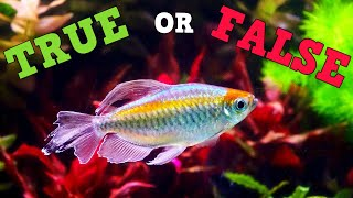 """You've Been LIED To About Water Changes, New Series """"True Or False"""""""
