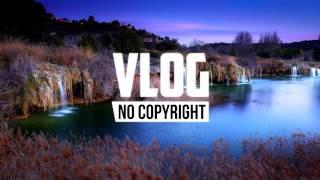 Xad - Birds (Vlog No Copyright Music)
