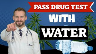 Simple Way to Pass a Drug Test With Water