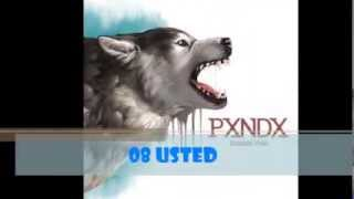 PXNDX-USTED [LETRA]