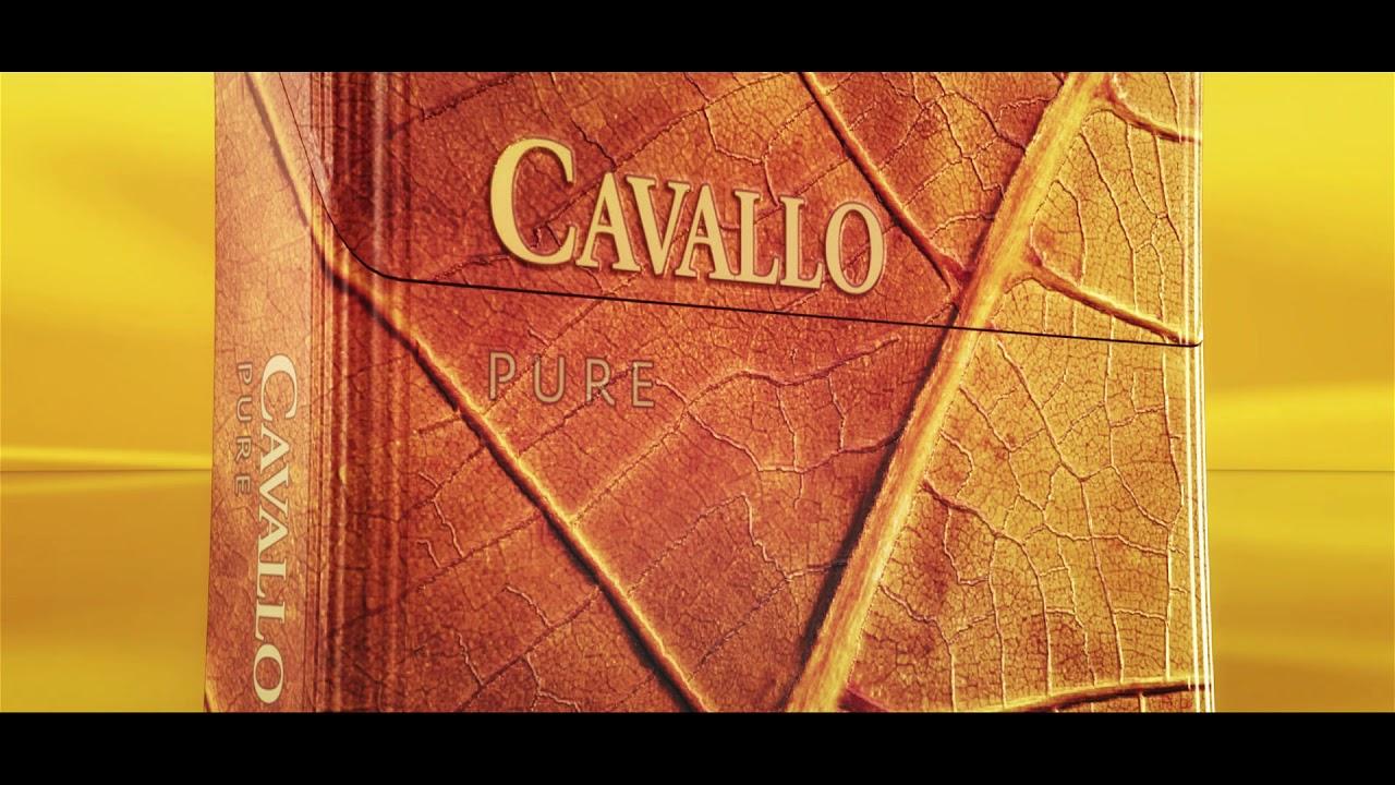 Cavallo Pure Final