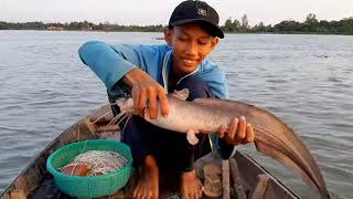 19 Tuổi Làm Nghề giăng Câu Ăn Tết Dính Cá Ngát Khủng # SĂN BẮT ĐỒNG THÁP #