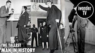Robert Wadlow - The Tallest Man Ever