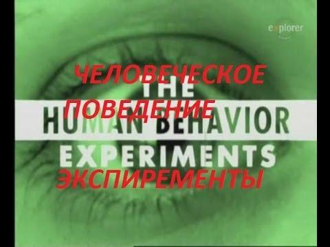 , title : 'Человеческие поведение Экспиременты.'