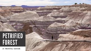 Petrified Forest National Park In Arizona: A One Day Travel Guide