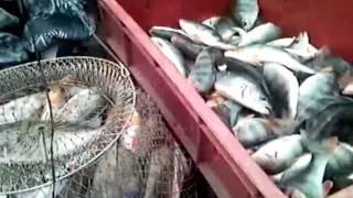 Форум любителей рыбалки лнр