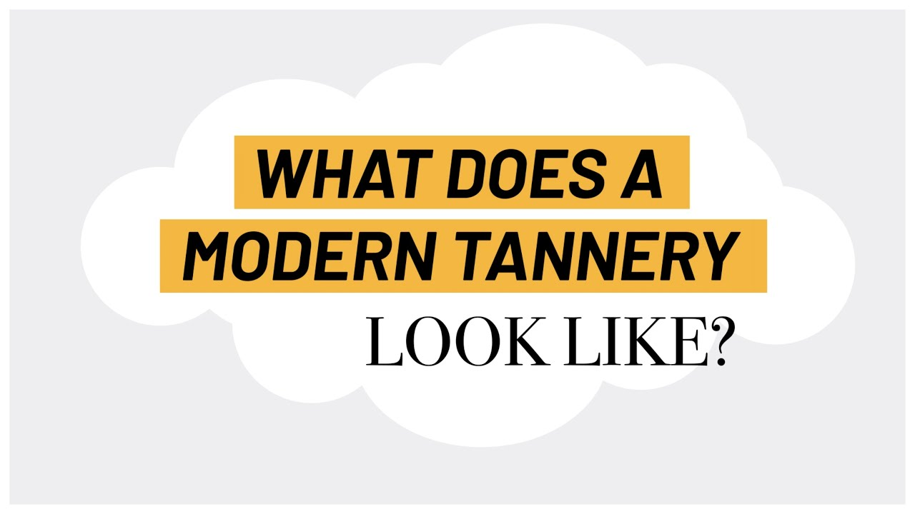 A modern tannery is a state-of-the-art facility