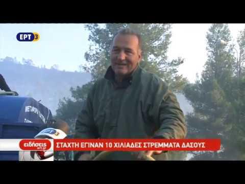 Ολονύκτια η μάχη με τις φλόγες στη Χαλκιδική | 26/10/18 | ΕΡΤ