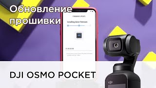 DJI Osmo Pocket | Как обновить прошивку?