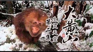 大黄山 02 生灵天堂 纪录片顶级首播(1080P超清版)