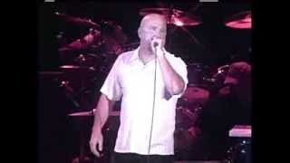 THE FABULOUS THUNDERBIRDS  Rock This Place 2004 Live