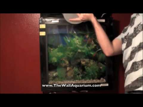 Wall Mounted Aquarium Wholesale Price For Wall Hanging