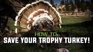 Removing a Turkey Fan & Beard