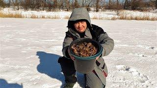 Ловля рака на удочку зимой