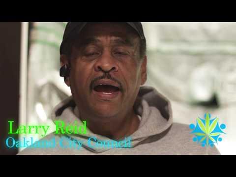Oakland's Larry Reid Wrongly Called Cannabis University Graduate