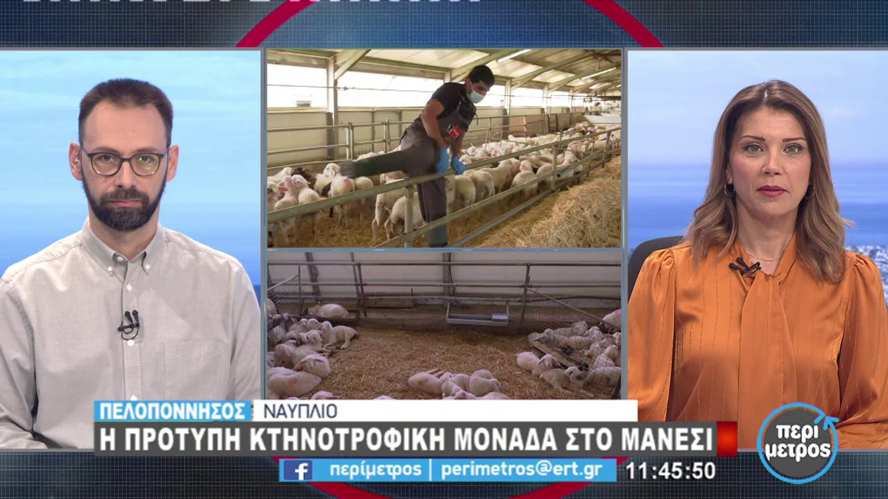 Πρότυπη κτηνοτροφική μονάδα στο Μάνεση του Ναυπλίου | 04/02/2021 | ΕΡΤ