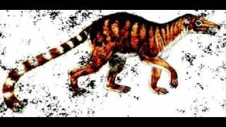 preview picture of video 'AN EXTINCT MAMMAL NAMED AFTER QUETTA CITY : quettacyon parachi'
