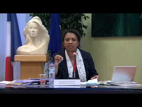 Conseil Municipal de Vaulx-en-Velin du 28 avril 2015