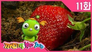 깨미랑 부카채카 KEMY #11 딸기가 좋아