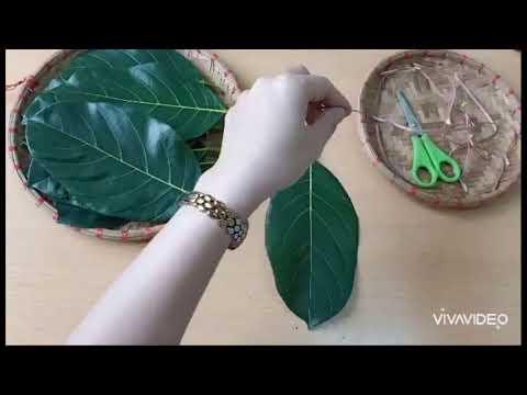 Hướng dẫn trẻ làm con trâu từ lá cây