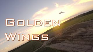 Golden Wings | FPV Wings | FPV Chase