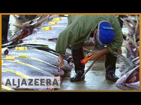 🇯🇵Tsukiji, Tokyo's famed fish market, closes down after 83 years l Al Jazeera English