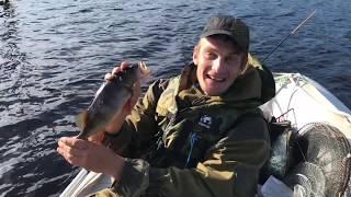 Отчёты о рыбалка в карелии