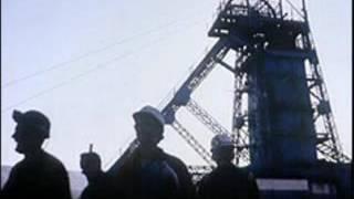 The blackleg miner