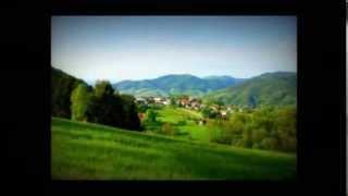 preview picture of video 'Restaurant Bühlertal Schwarzwald'