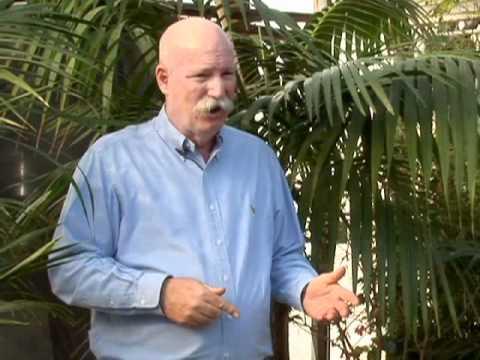 Ang panganib ng kuko halamang-singaw
