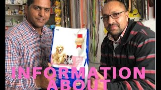 Information About Dog | Puppy Starter Feed | Give | Until When | Good Result | Pet Care | BholaShola