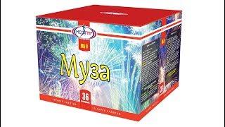 """Муза"" МБ9 салют 36 залпов 0.6"" + подарок от компании Интернет-магазин SalutMARI - видео"