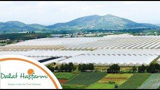 [Flowers TV] Dalat Hasfarm Vision And Mission