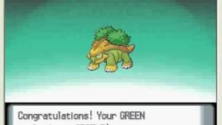 Grotle  - (Pokémon) - HD pokemon diamond/pearl TURTWIG evolve in to GROTLE