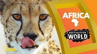 Africa   Destination World
