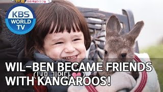 Will-Ben became friends with kangaroos! [The Return of Superman/2019.11.24]