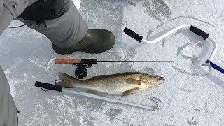 Марковские форумы рыбалка