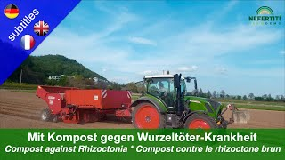 Compost for planting – Against Rhizoctonia root rot disease in potatoes