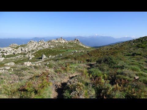 VIDÉO. Corse : randonnée sur le Monte San Petru, champignons et crash d'avion