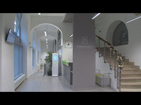 I. Kerületi Kormányablak - video preview image